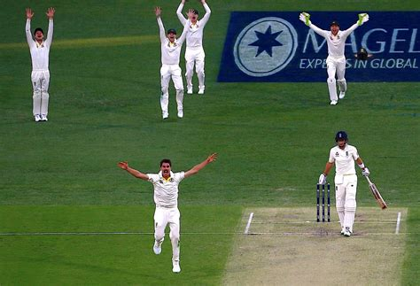 five things we learned from five things we learned from the first ashes testthe