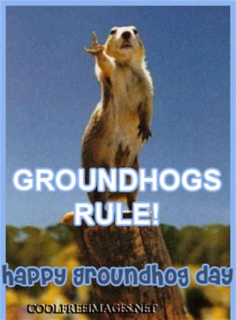 groundhog day free best groundhog day images and comments coolfreeimages net