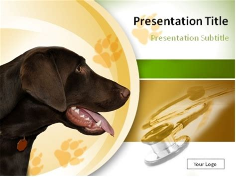 powerpoint templates for veterinarians download dogs and veterinary powerpoint template