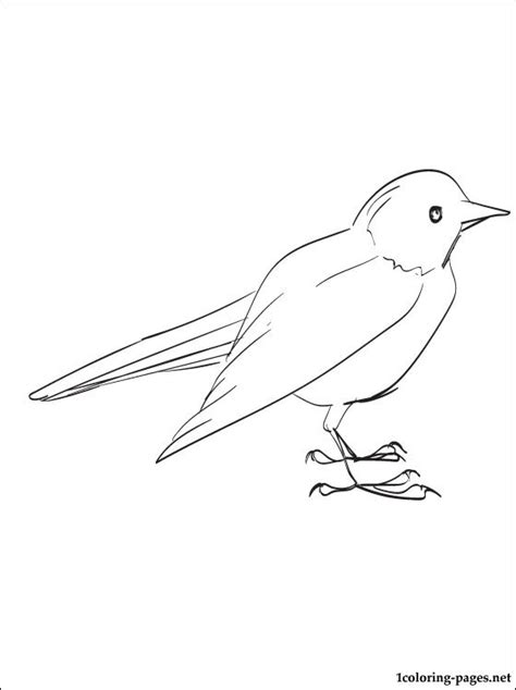 blackbird jet coloring pages free coloring pages of blackbird