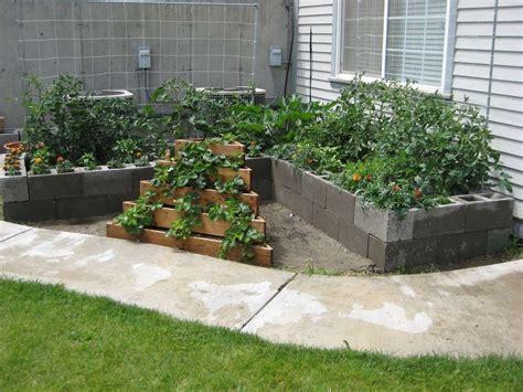 thinking    good plan    veggie garden