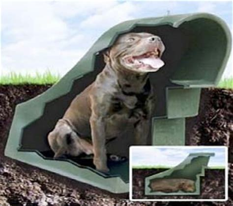 how to keep a dog house cool in the summer underground dog houses advantages and disadvantages