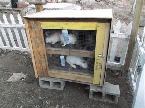 Handmade Rabbit Hutches - make rabbit hutch from pallets images
