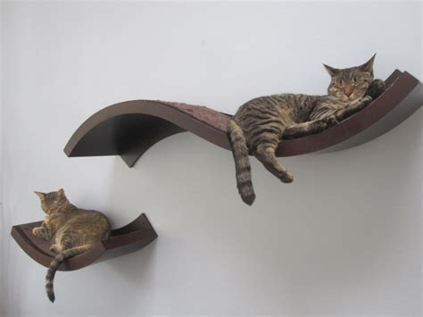 prevent cat from scratching couch heblogdir news 187 blog archive 187 how to keep cats from
