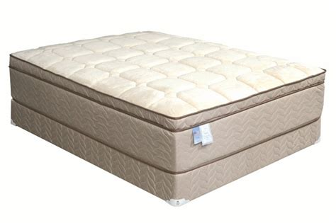 European Mattress by Inerspring Mattress Top Medium Soft