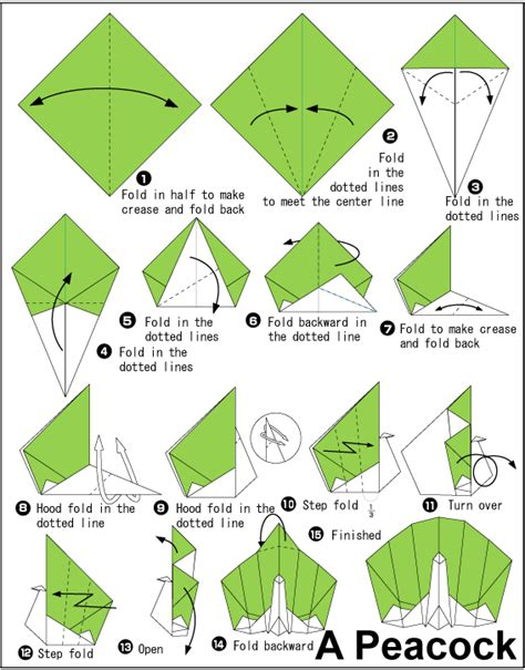 How To Make An Origami Peacock Step By Step - peacock easy origami for