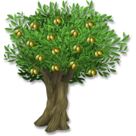 image olive tree png hay day wiki fandom powered by