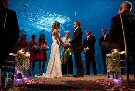 Wedding Venues Ta Fl by Great Places For Weddings In Florida Wedding Ideas 2018