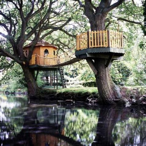 cool tree house tree houses here s a cool tree house with a bri