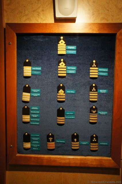 ship ranks legend of stripes for ranks of officers aboard cruise ship