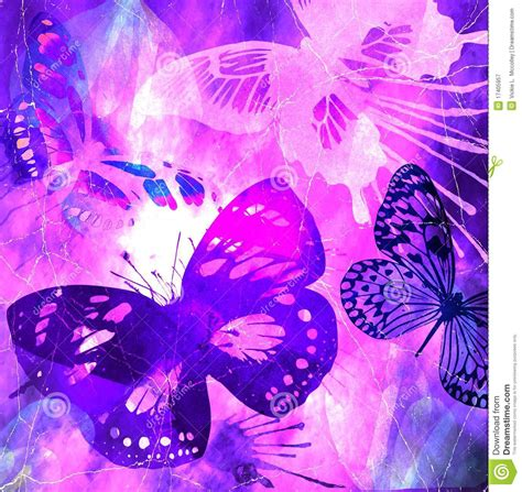 amapola testo originale mariposa violeta grunge
