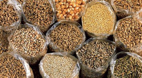 cucinare i cereali cucinare il farro e tutti i cereali tempi di cottura e
