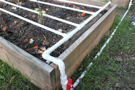 raised bed irrigation organic archives modern homemakers