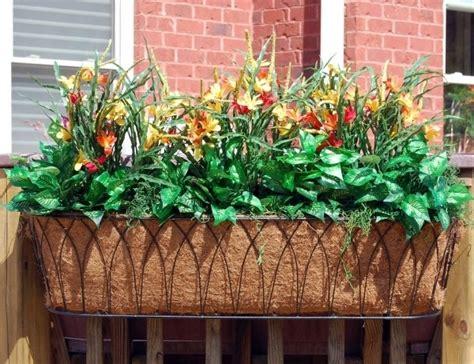 fioriere esterne piante esterne per fioriere idee per interni e mobili