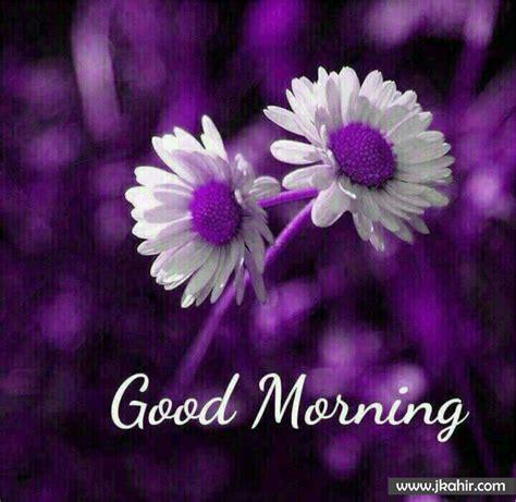 god ke good morring vidio good morning14 jkahir com hd wallpaper whatsapp image