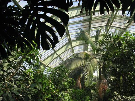 serre de jardins panoramio photo of grandes serres du jardin des plantes 224 le 03 06 2010