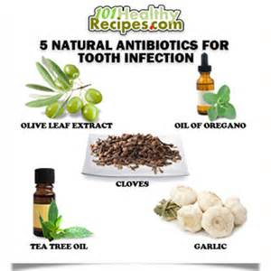 home remedies for antibiotics 5 antibiotics for tooth infection home remedies