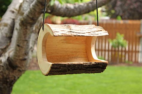 window  log bird houses  feeders forest street designs