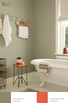 Plascon Kitchen And Bathroom by 1000 Images About Kitchen On Aloe Kitchen