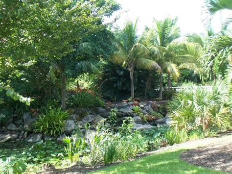 Mount Botanical Gardens Mounts Botanical Garden West Palm Fl Top Tips
