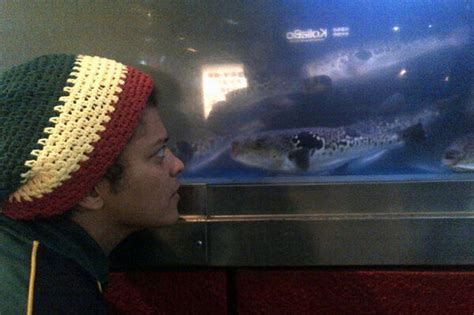 alexis sanchez bruno mars michelle keegan is blotto bruno mars is staring at fish