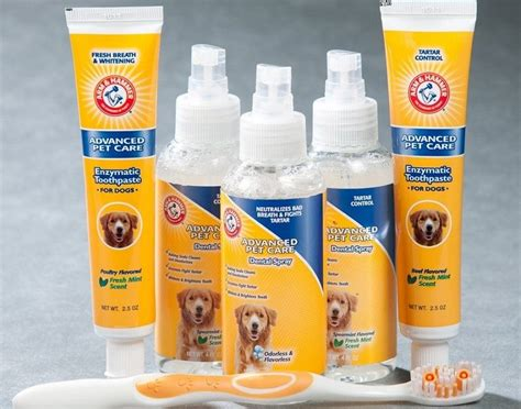 best toothpaste for dogs what is the best toothpaste