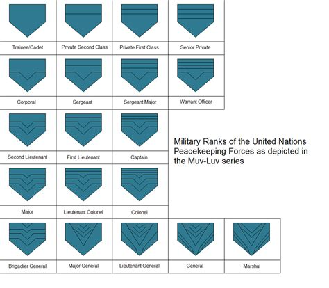 anime rank un rank insignia as depicted in muvluv alternative by