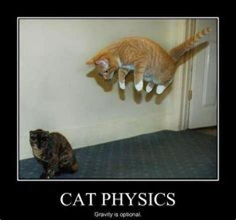 Funny Physics Memes - physics memes on pinterest science cat science jokes