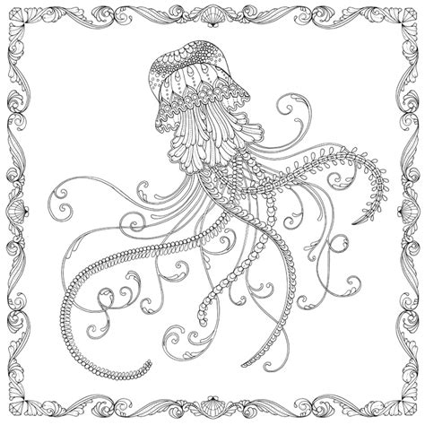 scottish garden seasons colouring book books johanna basford lost free jellyfish pattern