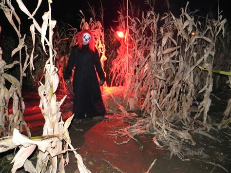 Utah Haunted House Corn Maze Guide