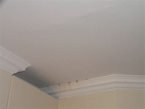 Cornice Ceiling by Ceiling And Cornice Repair Plastering In Chelsea