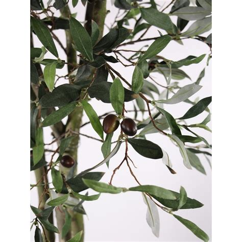 Olive Tree In Planter by Artificial Olive Tree In Planter Or