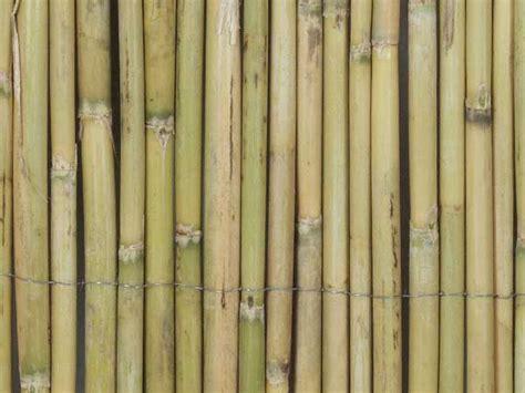 teehäuser für den garten bambusmatten als sichtschutz f 252 r den garten