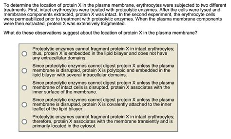 protein x is an unknown membrane protein solved protein x is an unknown membrane protein found in