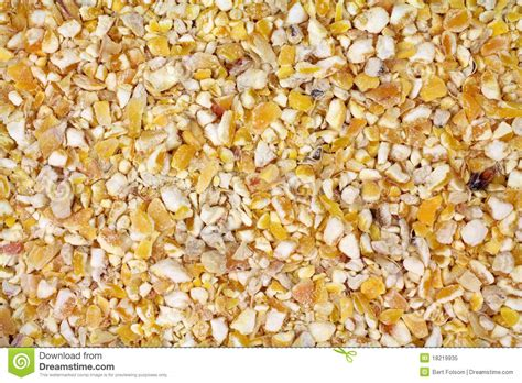 cracked corn bird seed royalty free stock photo image
