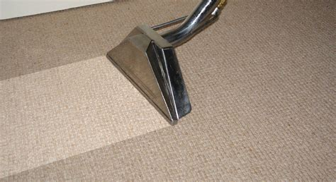 rug cleaning carpet cleaning professional carpet cleaners in