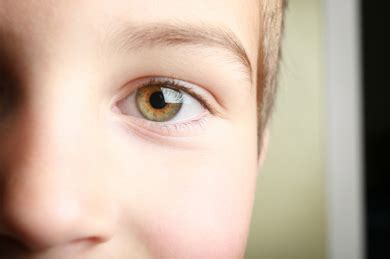 what is hazel eye color hazel a complete eye color guide