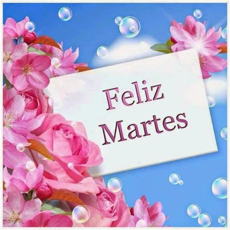 imagenes de un feliz martes postales con flores en d 237 a martes im 225 genes de facebook