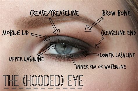 what does it mean to have bedroom eyes 15 most easy to apply makeup tips for hooded eyes