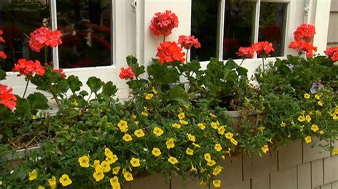 p allen smith container gardens window box container gardening p allen smith classics