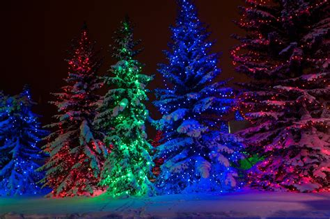 spruce meadows christmas lights at spruce meadows
