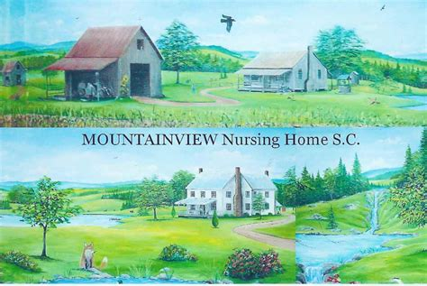 mountainview nursing home in spartanburg sc home review
