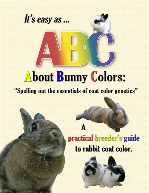color explained a breeder s perspective books rabbit books find rabbit books for sale