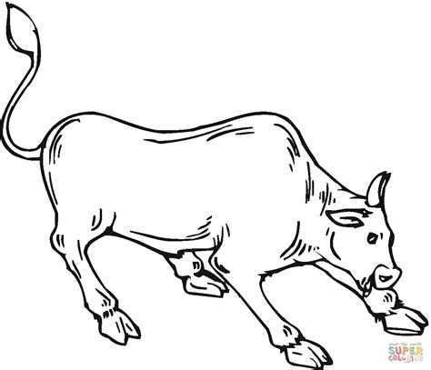 highland cow coloring page pokemon coloring pages ex fun coloring pages