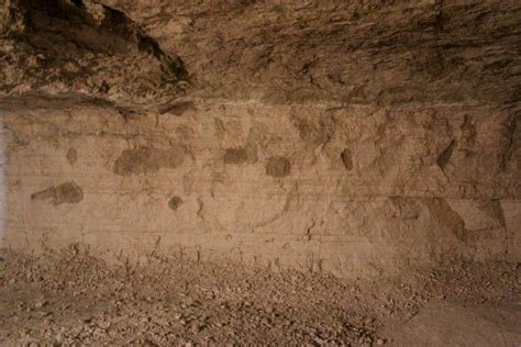 ground section fossil burrows shed light on great plains roots quest