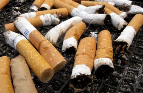 gastst tten stuttgart west rauchfreie gastst 228 tten im s 252 dwesten stuttgart liegt nur