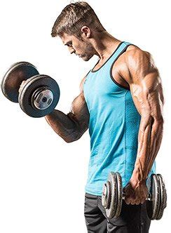creatine 3 weeks creatine loading strategies what works best