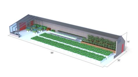 aquaponics business plan templates can a commercial aquaponics greenhouse be profitable