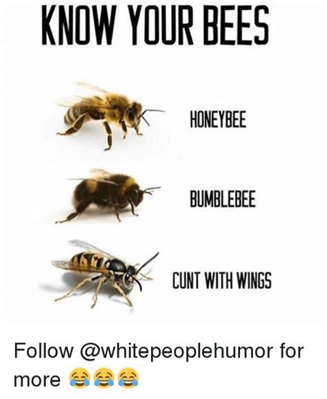 Bee Meme - 25 best memes about honeybee honeybee memes