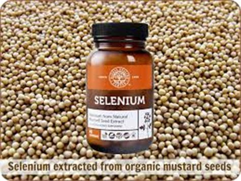 Selenium And Mercury Detox by The Top 7 Health Benefits Of Selenium Include Thyroid
